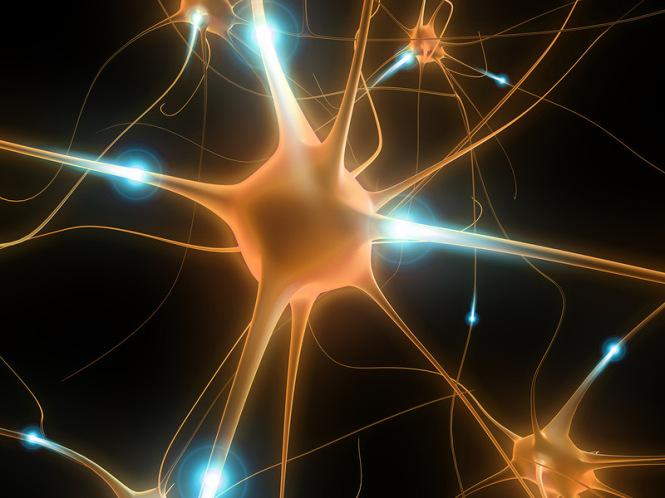 Почему ни о чём не думать так тяжело: Мозг поглощает много энергии, что бы